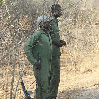 Wildlife rangers on patrol near Kariba, Zimbabwe, where three killer lions have been trapped (AP)