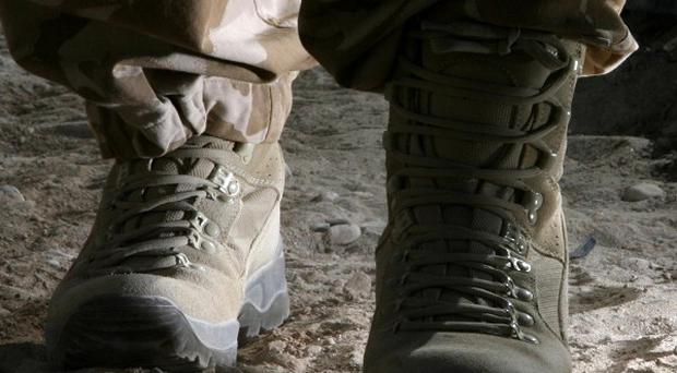 Seven marines died and five others were seriously hurt in mortar shell explosion during mountain warfare training in Nevada