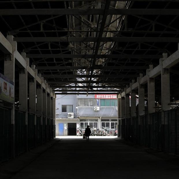 A worker walks though an empty live poultry wholesale market in Shanghai, China (AP)