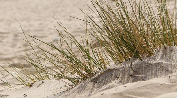 A boy has been rescued after being buried in a sand dune in Indiana