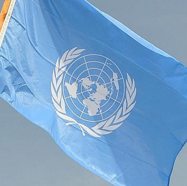 Seven UN peacekeepers have been killed in an ambush in Sudan's Darfur region