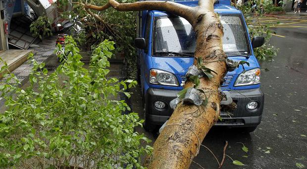 Fallen trees caused damage as Typhoon Soulik hit Taipei, Taiwan, earlier. (AP)