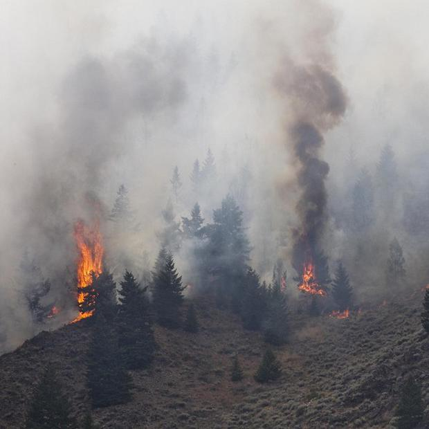 Firefighters continue to battle the Beaver Creek Fire in the Wood River Valley as it drops down the canyon hillside west of Hailey (AP)