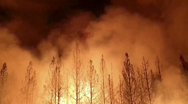 A fire burns near Yosemite National Park in California (AP/US Forest Service)