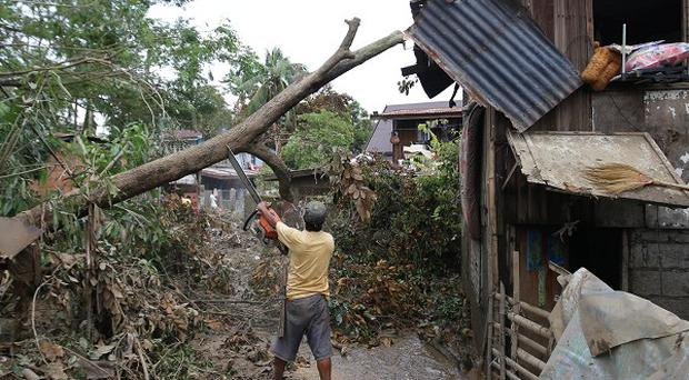 A man uses a chainsaw to cut toppled trees after typhoon Nari hit San Miguel town, Bulacan province, in the northern Philippines. (AP)