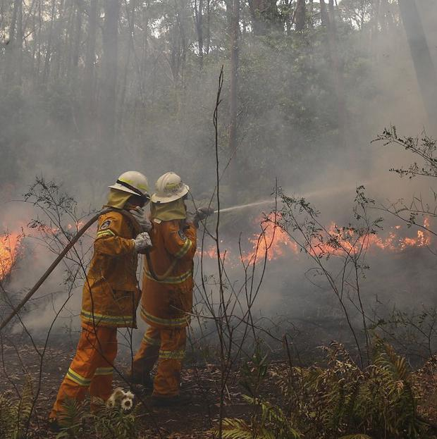 There had been fears that three of the fires near the Blue Mountains west of Sydney would join to create a massive, erratic wall of flames which would be difficult to control (AP)