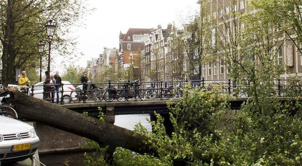 A fallen mature tree blocks the Herengracht canal in Amsterdam (AP)