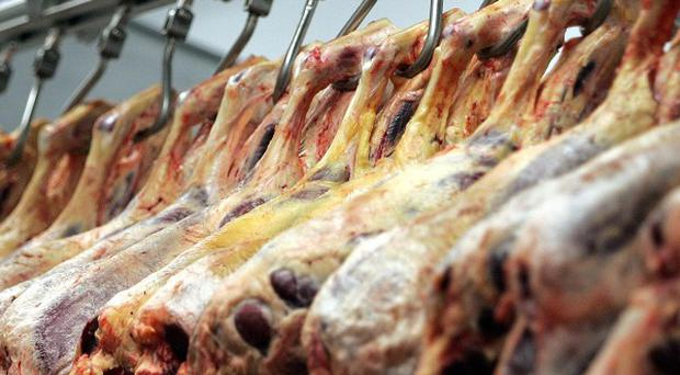 French police have arrested 21 people over the sale of horsemeat unfit for consumption