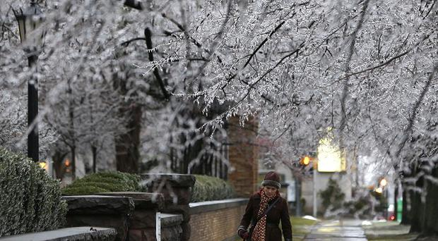 Ice-covered trees in Buffalo, New York state (AP)