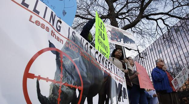 Protestors at Dallas Convention Centre where a permit to shoot a black rhino in Namibia was auctioned
