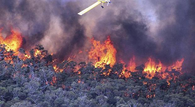 A water bomber works over a large fire burning throughout Victoria's Grampians region. (AP/Country Fire Authority)