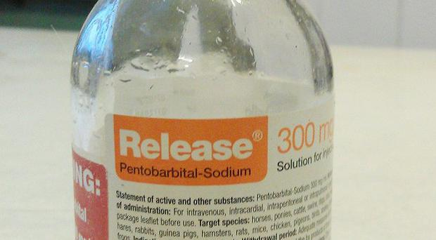 A bottle of pentobarbital, a lethal barbiturate that is used to execute death row inmates and is in short supply