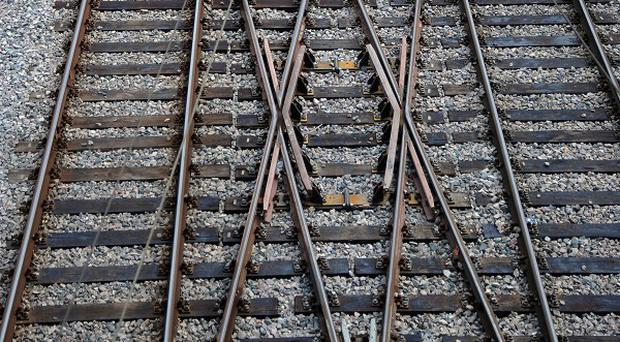 The woman was crushed after falling into the gap between the coach and the platform