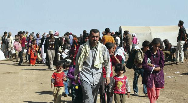 Displaced Iraqis from the Yazidi community arrive at Nowruz camp, in Derike, Syria