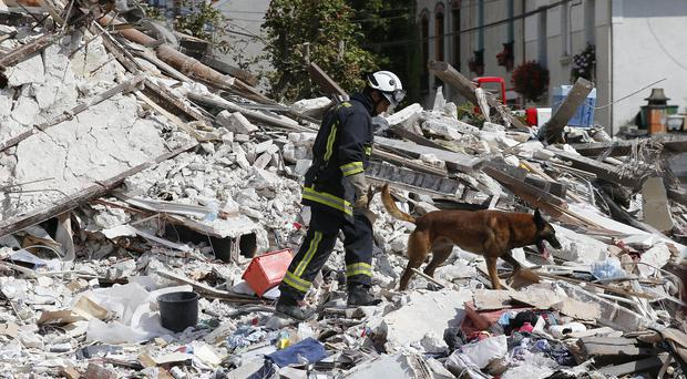 A French fireman and his dog search in the rubble of a building in Rosny-sous-Bois, outside Paris (AP)