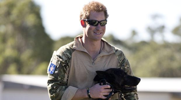 Prince Harry with a military working dog during a Counter Terrorism exercise with Australia's 2 Commando Regiment