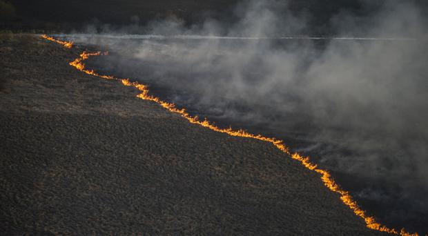 It is the second blaze to hit the exclusion zone this year (AP)