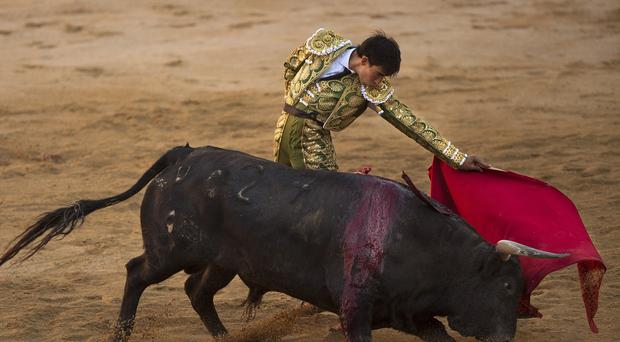Jimenez Fortes performs with a bull during the San Fermin festival in Pamplona, Spain (AP Photo/Andres Kudacki)