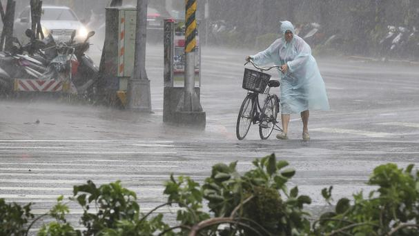 Behind fallen trees, a man braves the strong winds from Typhoon Soudelor with his bicycle in Taipei (AP)