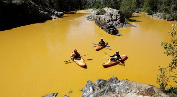 People kayak in the Animas River near Durango in Colorado, which has been coloured bright yellow after a spill of mine waste. (Jerry McBride/The Durango Herald via AP)