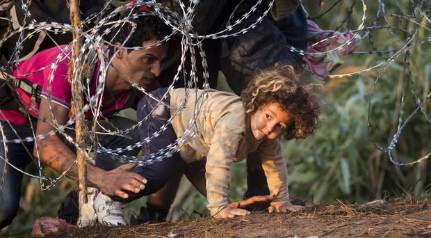 Refugees climb through barbed wire as they cross from Serbia to Hungary. (AP)