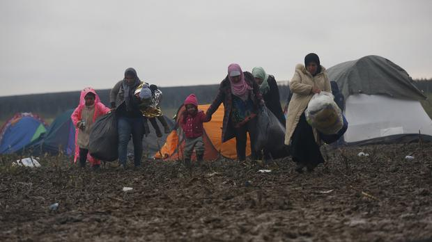Migrants walk in the field near a border line between Serbia and Croatia, near the village of Berkasovo, Serbia (AP)