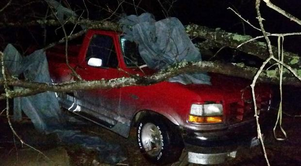 A fallen tree hit a pick-up truck in Holly Springs, Mississippi after a storm struck the town (AP)