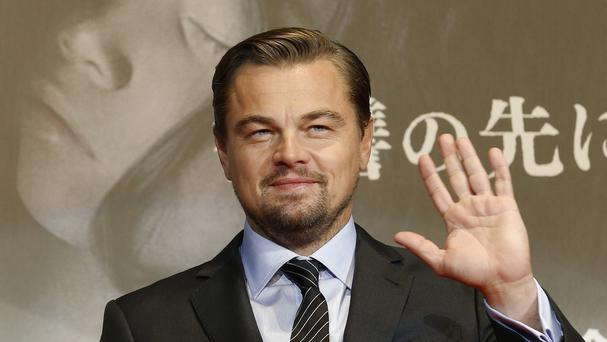 Indonesia's environment minister said she appreciates Leonardo DiCaprio's good intentions and hopes to cooperate with him in future. (AP)