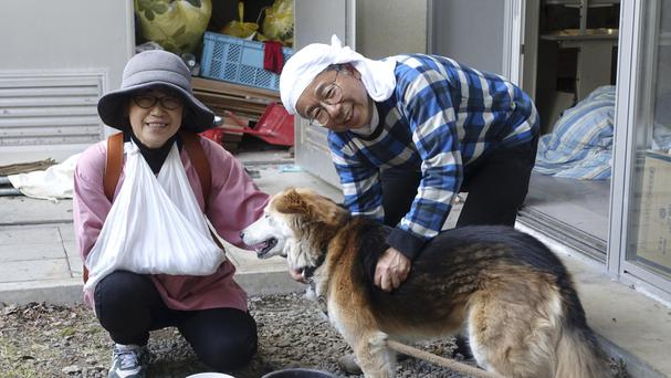 Yachiyo Fuchigami, 64, left, and her husband Koji, 62, feed their pet dog at the evacuation centre in Minamiaso. Yachio broke her arm when a bookshelf fell on her (AP)