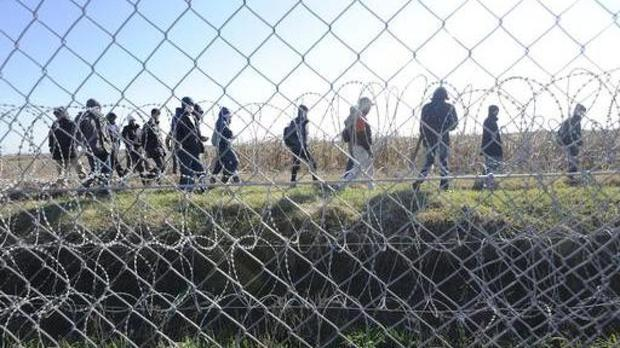 Migrants walk behind a temporary protective fence at the border between Hungary and Serbia (Zoltan Gergely Kelemen/MTI via AP)