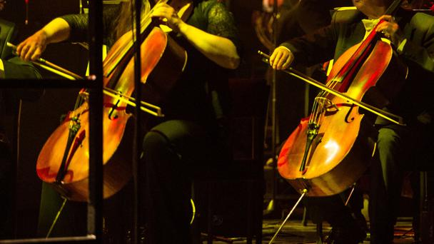 Jane Little played the double bass throughout her life