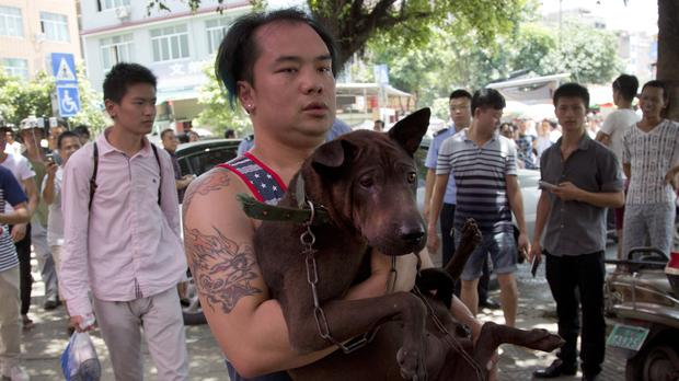 An animal activist carries a dog which he bought from a dealer out of a market during a dog meat festival in Yulin in China (AP)