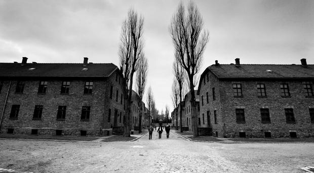 Moldova's parliament was praised for condemning the Holocaust, of which the most notorious camp was Auschwitz (pictures)