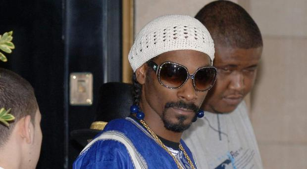 Snoop Dogg was one of the artists performing at the show