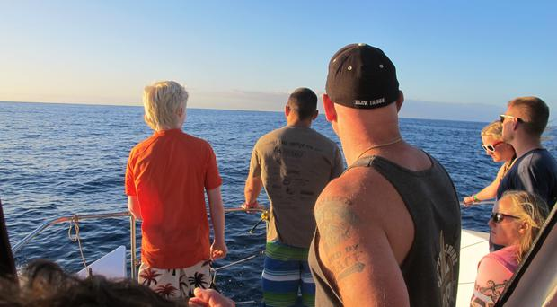 Tourists looking out on the horizon as their boat searches for dolphins in waters off Waianae, Hawaii (AP)