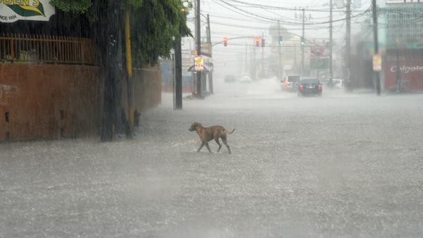 Parts of Jamaica have already been deluged by heavy rain as Hurricane Matthew approaches (AP)