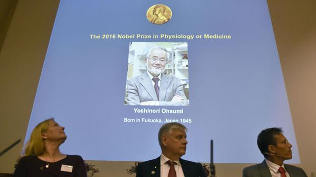 Japanese scientist wins 2016 Nobel Prize in physiology or medicine