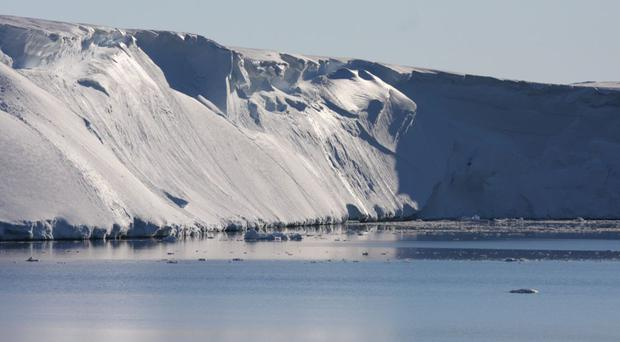 Antarctica's marine reserve will be the largest in the world