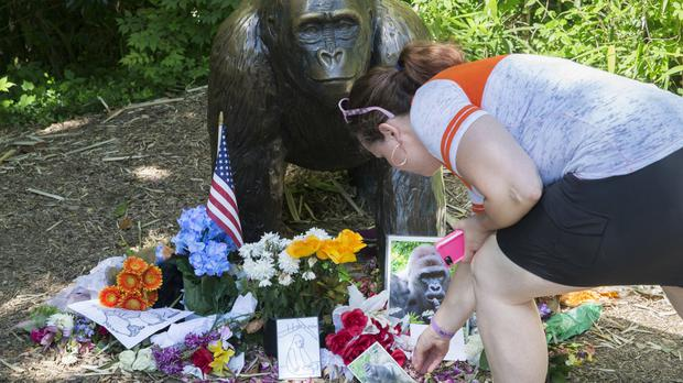 A makeshift memorial to Harambe outside the Gorilla World exhibit at the Cincinnati Zoo (AP)
