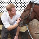 Prince Harry indulges in some horseplay at Barbados' Nature Fun Ranch, which allows young people to speak freely with one another about important topics, including HIV/Aids