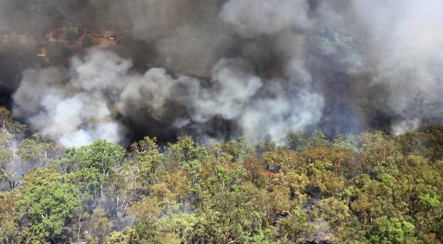 A wildfire rages near Mudgee (NSW Rural Fire Service/AP)