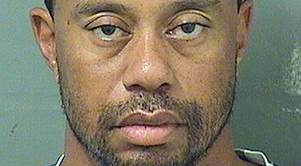 No alcohol was found in Tiger Woods' blood (Palm Beach County Sherrif's Office/PA)