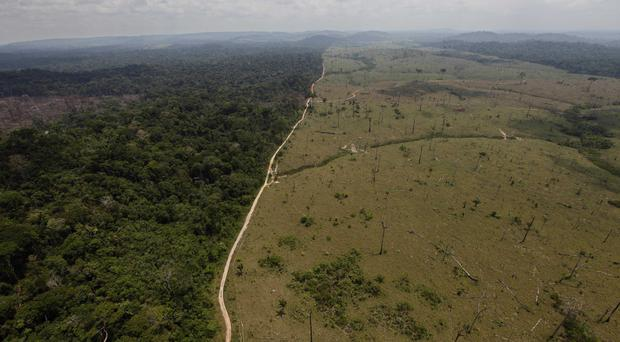 A deforested area near Novo Progresso in Brazil's northern state of Para (AP)