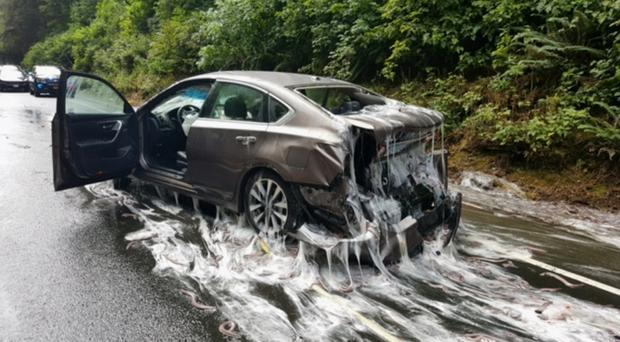 Truck carrying eels overturns, dumping slime over cars and highway