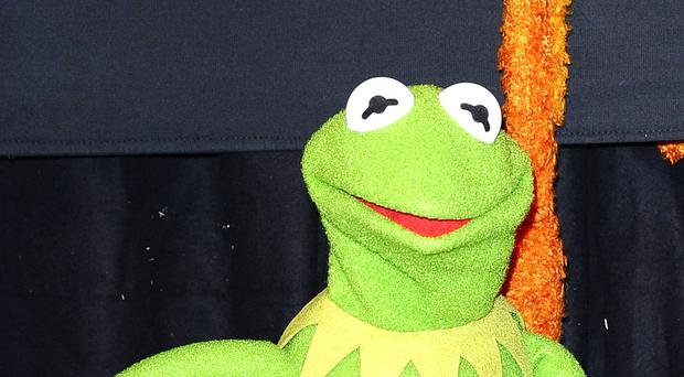 Disney reportedly fired Kermit actor over 'hostile' behavior