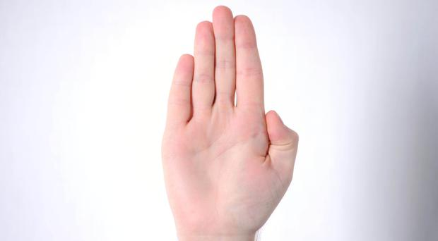 The chip would be implanted between the thumb and forefinger