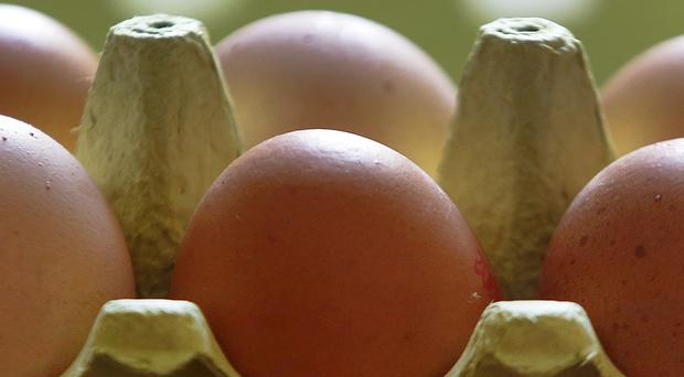 Dozens of producers in Belgium and the Netherlands are being investigated for eggs containing Fipronil, which is potentially dangerous (Michael Probst/AP)