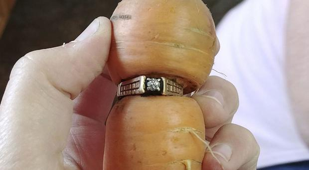 Mary Grams, 84, holds a carrot that grew through her engagement ring in Alberta (Iva Harberg/The Canadian Press via AP)