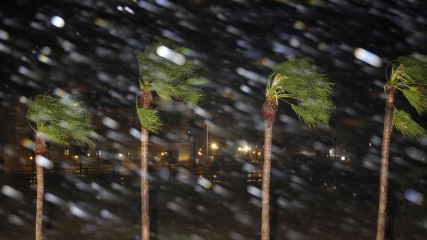Just a taster of what's to come: Rain is blown past palm trees as Hurricane Harvey makes landfall (AP)