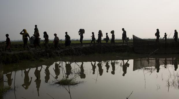 Members of the Rohingya minority walk through rice fields after crossing the border from Burma into Bangladesh (AP)